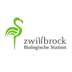 zwillbrock_zoom